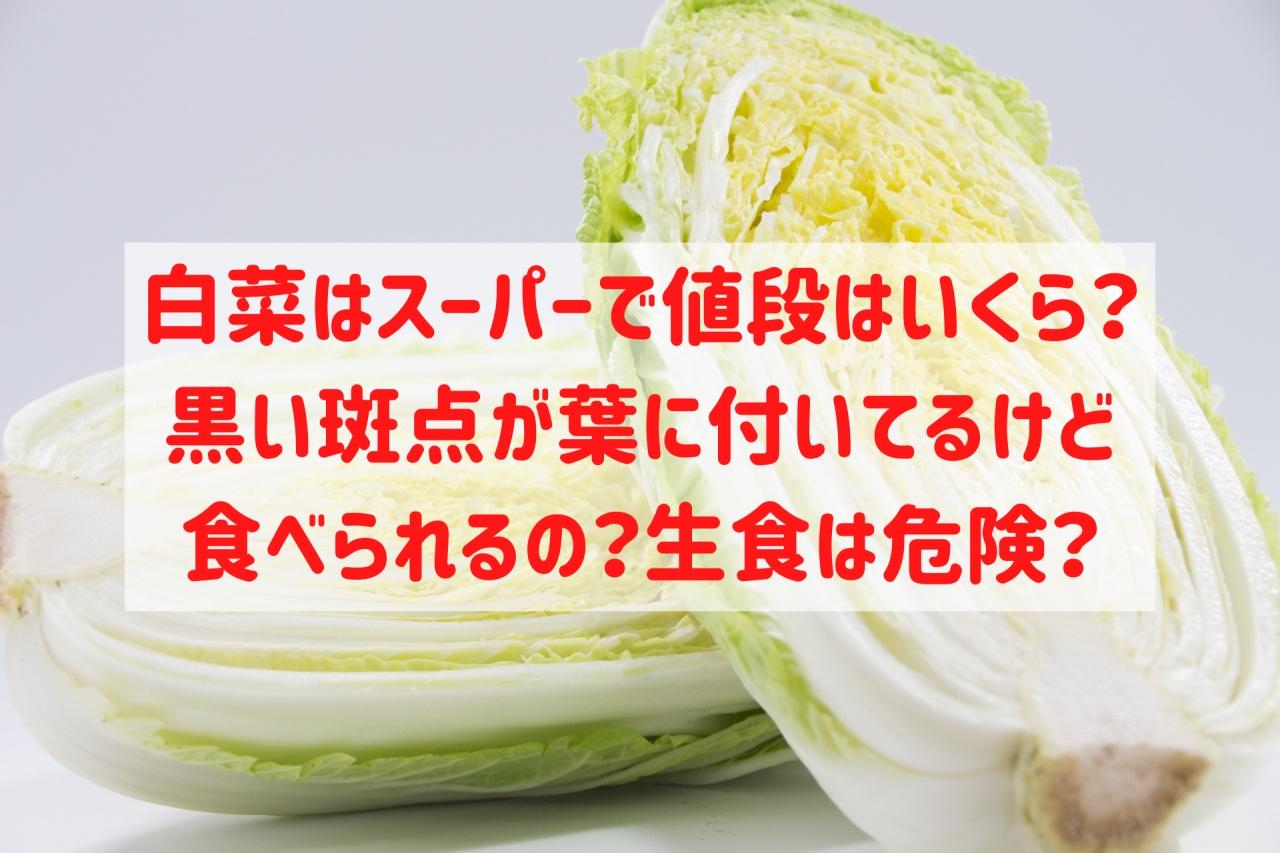 白菜 スーパー