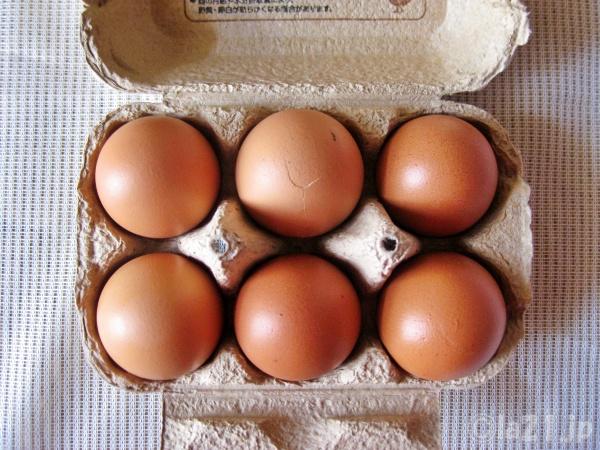 らでぃっしゅぼーや 平飼い卵