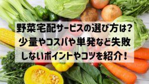 野菜宅配サービス 選び方