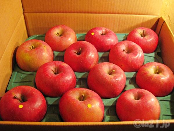 りんご 5キロ 値段